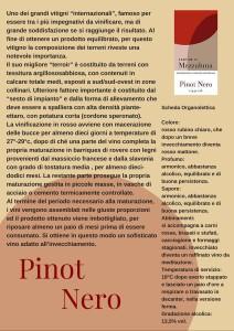 Scheda Pinot Nero